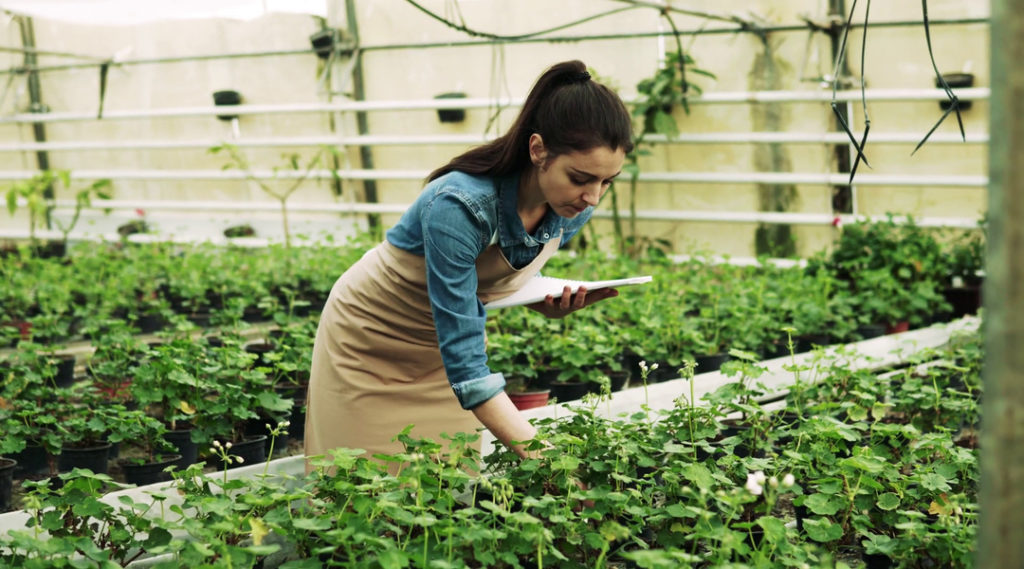 Gardening and Fitness Tips