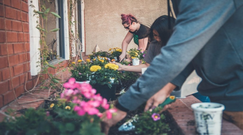 Weight Loss with Gardening